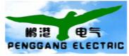 温州鹏港电气有限公司