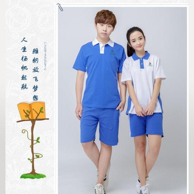 成都校服运动套装 统一正品中学生女款夏季运动套装图片