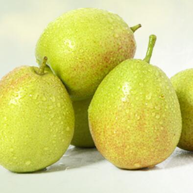 新疆库尔勒特级香梨箱装