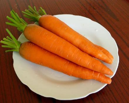供应大量新鲜胡萝卜