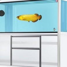 大鱼缸大型水族箱同城配送底过滤鱼缸1.8米