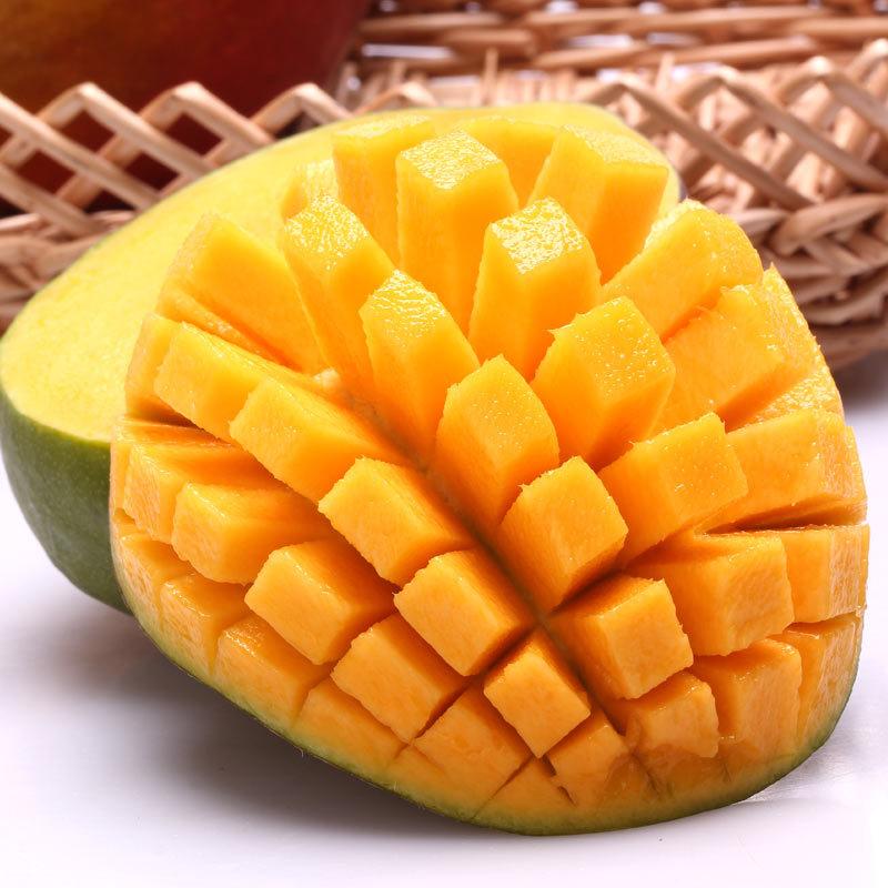 攀枝花特产芒果 现摘现发 凯特大芒果8斤装  新鲜水果 果园直销 皮薄肉厚