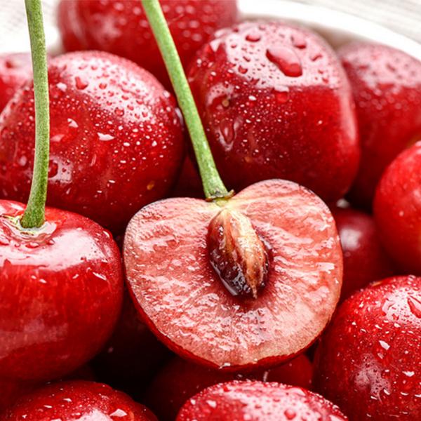 陕西樱桃有机肥施用技术