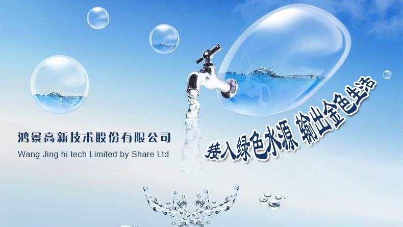 鸿景高新技术股份有限公司