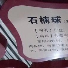 深圳厂家供应木器漆油墨家具漆油墨超强附着力三聚氰胺木板丝印油墨
