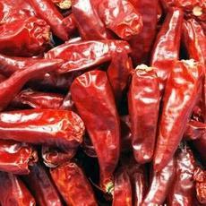 供应大量优质高辣度新一代干辣椒