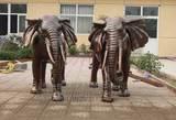铜大象_铜雕大象_铜象_铜象摆件_大象雕塑-天顺