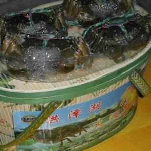 洪州牌大闸蟹3.5-4两母蟹4公