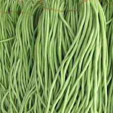 新乡市种植生产销售新鲜的长豆角