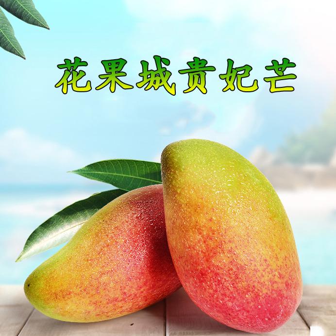 攀枝花芒果 热带水果 花果城贵妃芒 5斤 8斤批发 预计6月20号上市