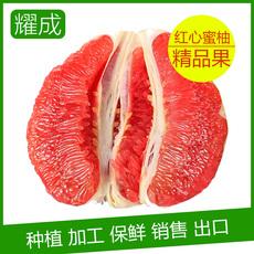 正宗福建平和琯溪蜜柚 红肉蜜柚 5000斤起批发