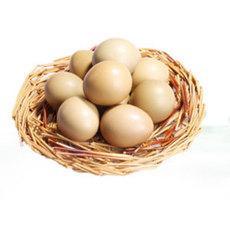 特价鲜鸡蛋 仁人种养殖鲜鸡蛋优惠啦