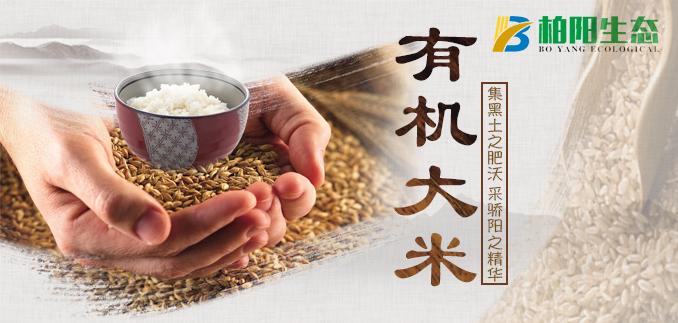 江西柏阳生态农业发展有限公司