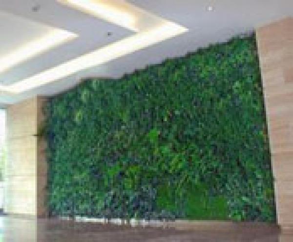 绿色仿真植物墙 把束万年青叶