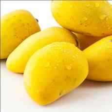 芒果浓缩汁进口浓缩果汁厂家直供11