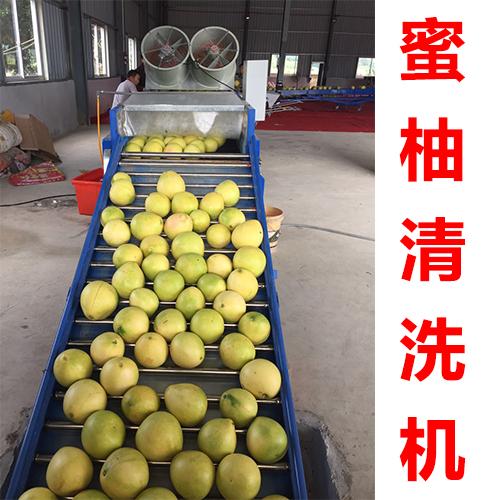 果蔬清洗机柚果清洗机水果清洗机蜜柚清洗机   价格面议