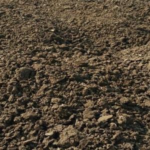 供应 鸡粪干鸡粪有机肥 红枣核桃专用有机肥料