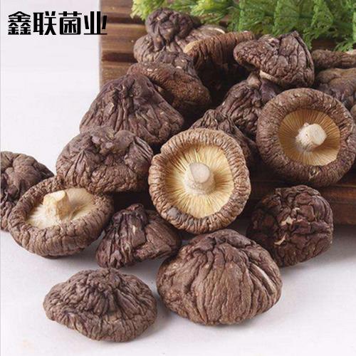 鑫联菌业-瓶装干香菇