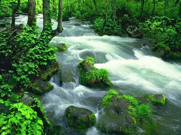 天然矿泉水成新宠