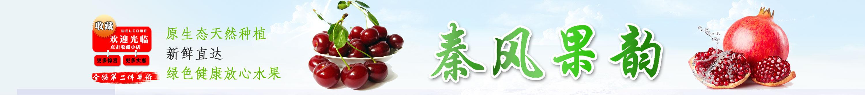 石榴金牌供应商-中国石榴产业网