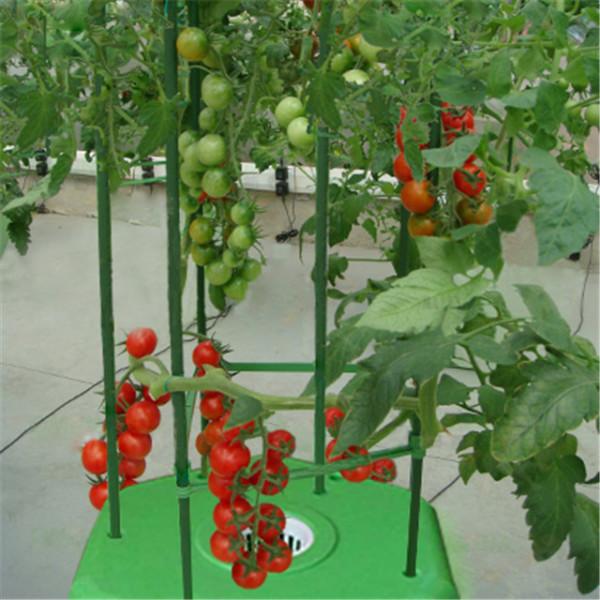 无土栽培水培蔬菜设备全自动种菜机阳台绿色花卉攀爬花架楼顶水耕