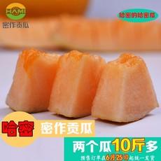 新疆哈密瓜火热预售 密作贡瓜--紫鼎蜜 10~12斤两颗装 包邮