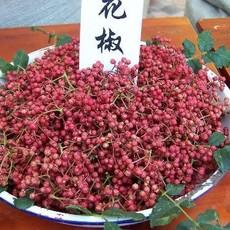 特种一级正宗花椒  火锅配料  熬制花椒油