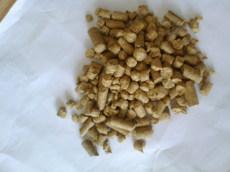 供应饲料原料-南瓜粕颗粒,适口性好,性价比高