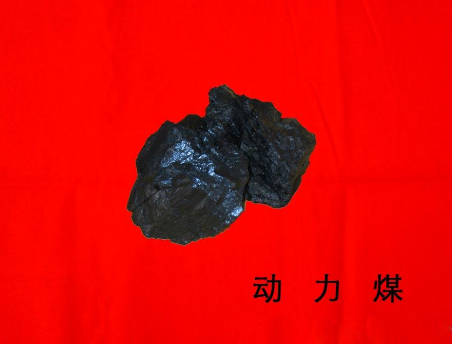 动力煤_6400_1#