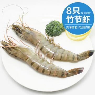 供应 野生竹节虾 山东特产斑节虾