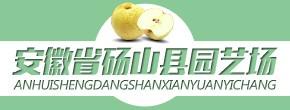 安徽省砀山县园艺场
