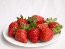 章姬草莓上市销售