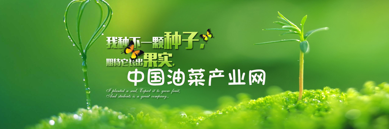 中国油菜产业网