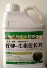 供应竹柳专用生根促长剂