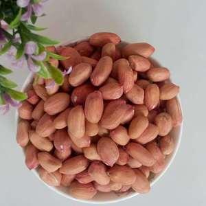新鲜红皮花生米 自家种植 红皮花生