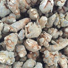 云南文山特产40头三七 优质三七滋补中药材可批粉批发零售