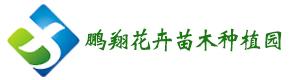 益阳市资阳区鹏翔花卉苗木种植园