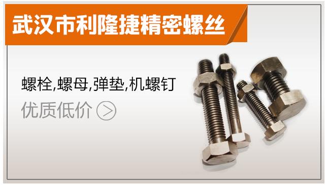 武汉市利隆捷精密螺丝制造有限公司