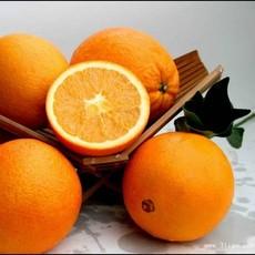 送礼之佳品现大量(预)订20斤装精品脐橙新鲜橙子 悦橙(预11月20日)