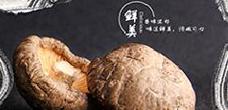 灵宝新华食用菌