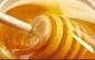 蜂蜜供应 土蜂蜜自产纯正天然长白山农家椴树蜜紫椴雪蜜瓶装