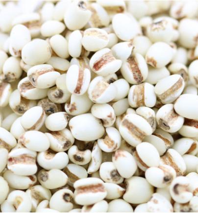 宁夏小薏米350g 精选有机绿色食品 五谷杂粮薏仁米批发