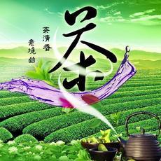 安徽特产    雨前新鲜茶叶