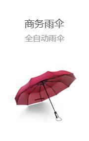 商务雨伞 全自动雨伞
