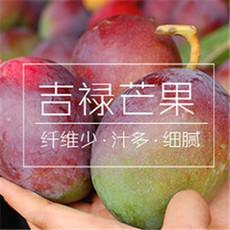 攀枝花特产芒果 轩果香吉禄芒果  10斤装净果 果园直供 果超大 热带水果