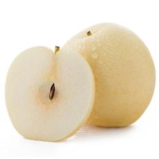 现摘梨子新鲜水果皇冠梨砀山梨酥梨雪梨香梨