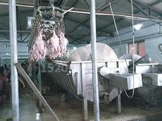 螺旋预冷机鸡预冷机的价格 螺旋预冷机鸡预冷机 。