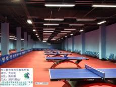供应乒乓球场地灯具灯光照明改造维修维护服务
