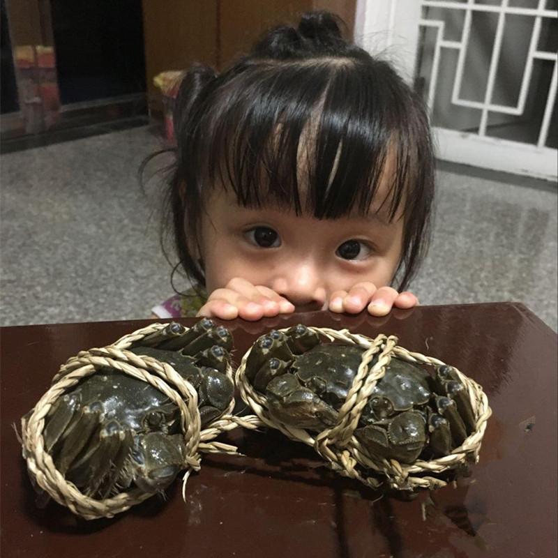 大闸蟹鲜活螃蟹公4.5-4.1两母3.3-3.0两 10只装