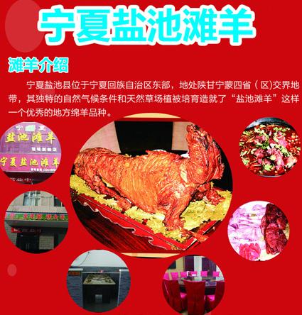 中国滩羊交易网